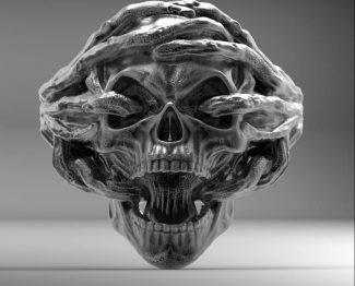 Roots Skull ring